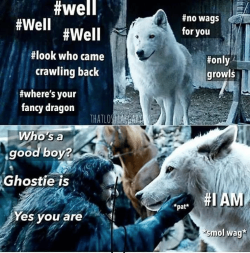 whos a:  #well,  #no wags  #Well #Well  for you  #look who came  #only  crawling back  growls  #where's your  fancy dragon  THATLOSA A  Who's a  good boy?  Ghostie is  pat AM  *pat*  Yes you are  smol wag*
