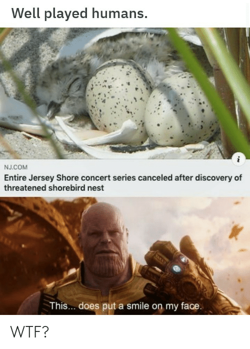 Nest: Well played humans.  i  NJ.COM  Entire Jersey Shore concert series canceled after discovery of  threatened shorebird nest  This.. does put a smile on my face. WTF?