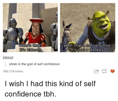 Confidence, Donkey, and God: Well, that's not very nice:  It'S 1ust a donkey.  Its hideous  totonut  shrek is the god of self confidence  690,119 notes I wish I had this kind of self confidence tbh.