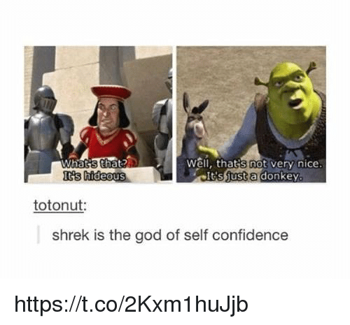 Confidence, Donkey, and God: Well, that's not very nice  shust a donkey  Iis hideous  totonut  shrek is the god of self confidence https://t.co/2Kxm1huJjb