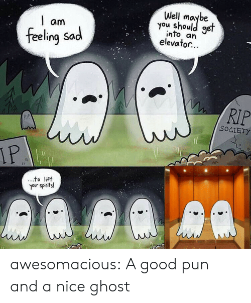 pun: Well  you shoule  get  am  into an  elevator...  feeling Sad  RIP  RIP  SOCIETY  IP  to lift  your spirits! awesomacious:  A good pun and a nice ghost