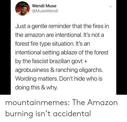 fascist: Wendi Muse  @MuseWendi  Just a gentle reminder that the fires in  the amazon are intentional. It's not a  forest fire type situation. It's an  intentional setting ablaze of the forest  by the fascist brazilian govt +  agrobusiness & ranching oligarchs.  Wording matters. Don't hide who is  doing this & why. mountainmemes:  The Amazon burning isn't accidental
