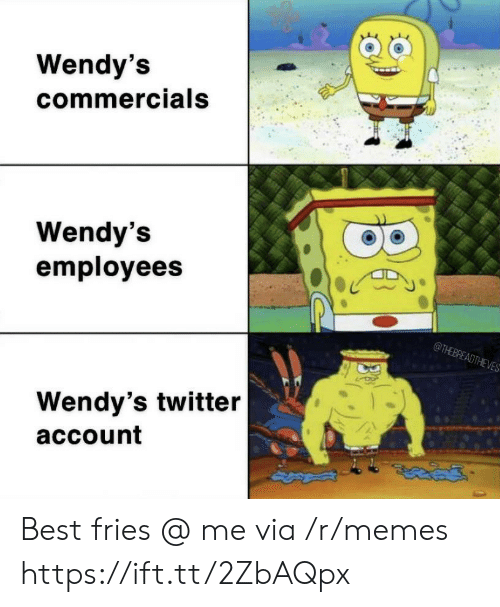 wendys: Wendy's  commercials  Wendy's  employees  @THEBREADTHEVES  Wendy's twitter  account Best fries @ me via /r/memes https://ift.tt/2ZbAQpx