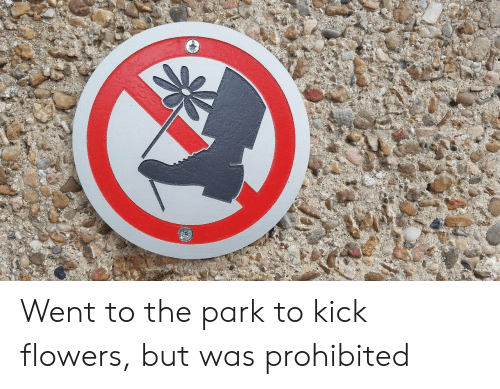 Prohibited: Went to the park to kick flowers, but was prohibited