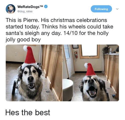 Christmas, Best, and Good: WeRateDogsTM  @dog_rates  Following  This is Pierre. His christmas celebrations  started today. Thinks his wheels could take  santa's sleigh any day. 14/10 for the holly  jolly good boy Hes the best