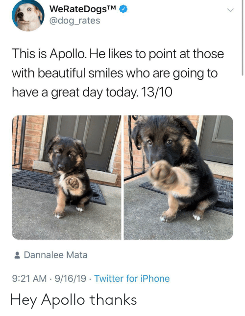 Dog Rates: WeRateDogsTM  @dog_rates  This is Apollo. He likes to point at those  with beautiful smiles who are going to  have a great day today. 13/10  & Dannalee Mata  9:21 AM 9/16/19 Twitter for iPhone Hey Apollo thanks