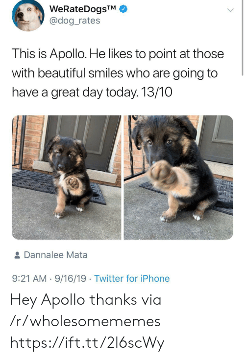 Dog Rates: WeRateDogsTM  @dog_rates  This is Apollo. He likes to point at those  with beautiful smiles who are going to  have a great day today. 13/10  & Dannalee Mata  9:21 AM 9/16/19 Twitter for iPhone Hey Apollo thanks via /r/wholesomememes https://ift.tt/2l6scWy