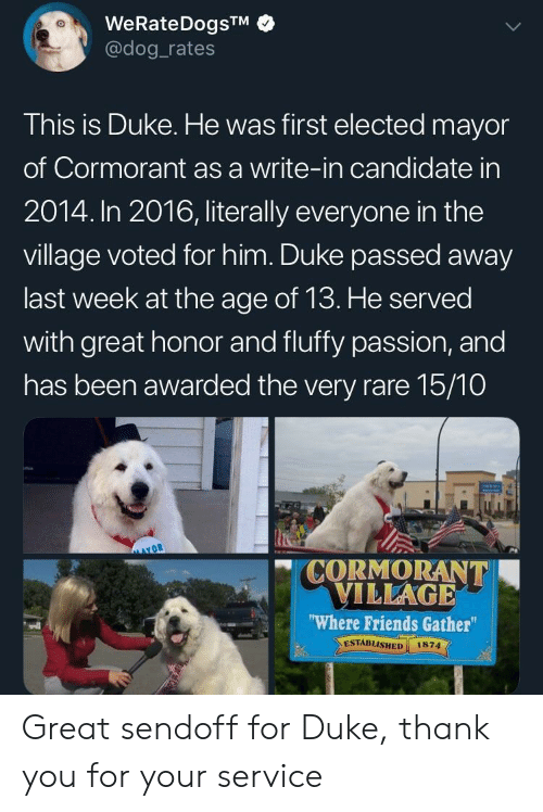 Dog Rates: WeRateDogsTM  @dog rates  This is Duke. He was first elected mayor  of Cormorant as a write-in candidate in  2014. In 2016, literally everyone in the  village voted for him. Duke passed away  last week at the age of 13. He served  with great honor and fluffy passion, and  has been awarded the very rare 15/10  CORMORANT  VILLAGE  Where Friends Gather  ESTABLISHED 1874  vdl Great sendoff for Duke, thank you for your service