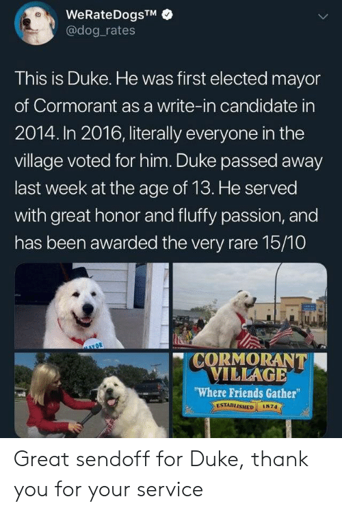 "village: WeRateDogsTM  @dog rates  This is Duke. He was first elected mayor  of Cormorant as a write-in candidate in  2014. In 2016, literally everyone in the  village voted for him. Duke passed away  last week at the age of 13. He served  with great honor and fluffy passion, and  has been awarded the very rare 15/10  CORMORANT  VILLAGE  ""Where Friends Gather  ESTABLISHED  1874 Great sendoff for Duke, thank you for your service"