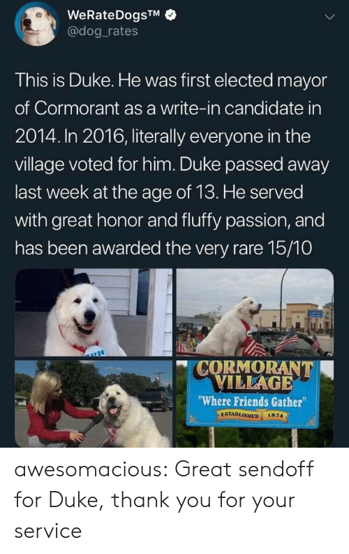 "village: WeRateDogsTM  @dog rates  This is Duke. He was first elected mayor  of Cormorant as a write-in candidate in  2014. In 2016, literally everyone in the  village voted for him. Duke passed away  last week at the age of 13. He served  with great honor and fluffy passion, and  has been awarded the very rare 15/10  CORMORANT  VILLAGE  ""Where Friends Gather  ESTABLISHED  1874 awesomacious:  Great sendoff for Duke, thank you for your service"