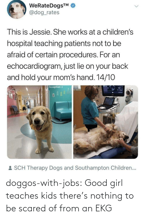 Dogs: WeRateDogsTM  @dog_rates  This is Jessie. She works at a children's  hospital teaching patients not to be  afraid of certain procedures. For an  echocardiogram, just lie on your back  and hold your mom's hand. 14/10  Reception->  : SCH Therapy Dogs and Southampton Children... doggos-with-jobs:  Good girl teaches kids there's nothing to be scared of from an EKG