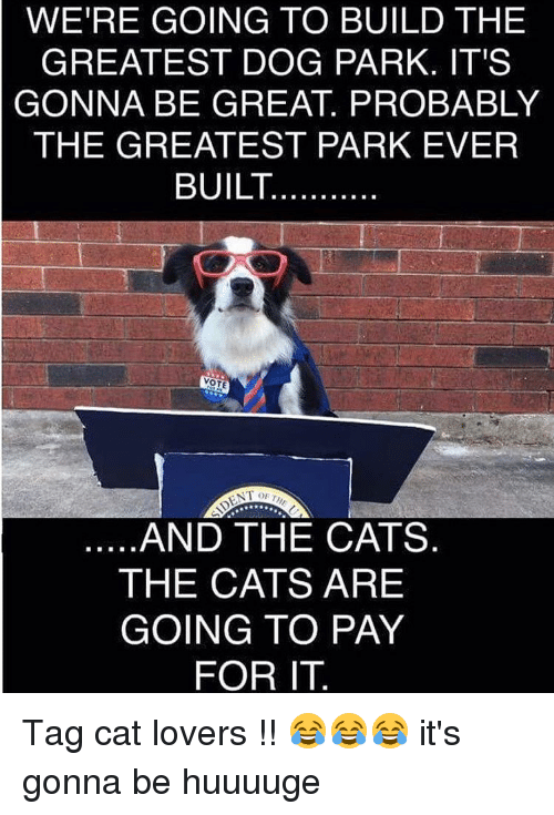 cat lover: WERE GOING TO BUILD THE  GREATEST DOG PARK. IT'S  GONNA BE GREAT PROBABLY  THE GREATEST PARK EVER  BUILT  VOTE  NT OF TH  AND THE CATS  THE CATS ARE  GOING TO PAY  FOR IT Tag cat lovers !! 😂😂😂 it's gonna be huuuuge