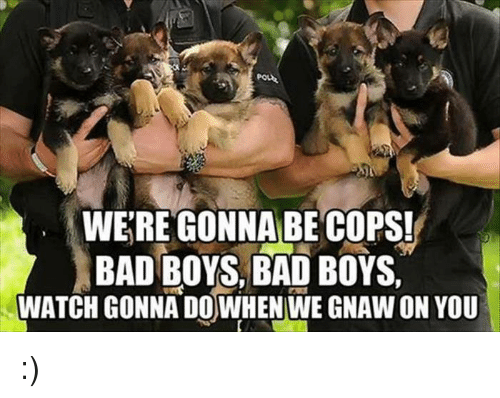 gnaw: WERE GONNA BE COPS!  BAD BOYS, BAD BOYS,  WATCH GONNA DOWHEN WE GNAW ON YOU :)