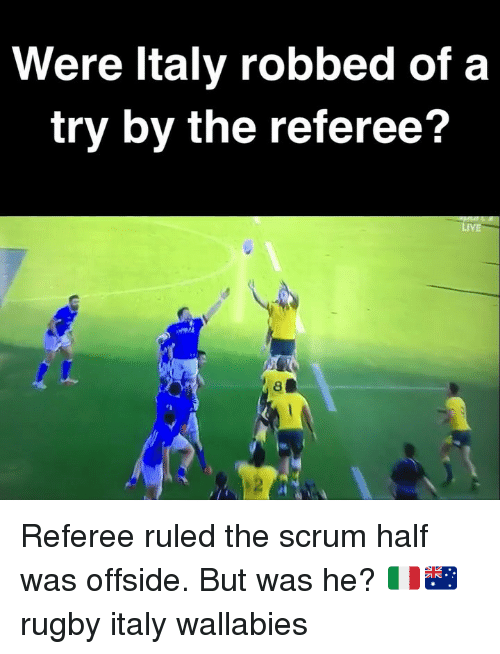 referee: Were ltaly robbed of a  try by the referee?  LiVE  2 Referee ruled the scrum half was offside. But was he? 🇮🇹🇦🇺 rugby italy wallabies