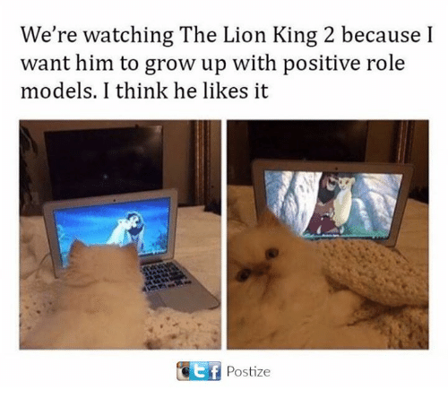 Memes, The Lion King, and Lion: We're watching The Lion King 2 because I  want him to grow up with positive role  models. I think he likes it  Postize