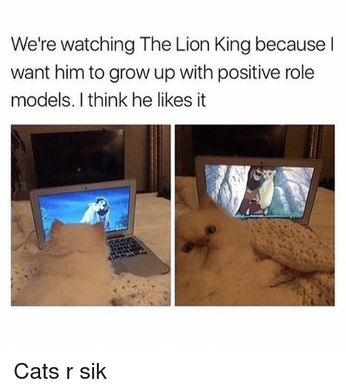 Cats, Memes, and The Lion King: We're watching The Lion King because l  want him to grow up with positive role  models. I think he likes it Cats r sik