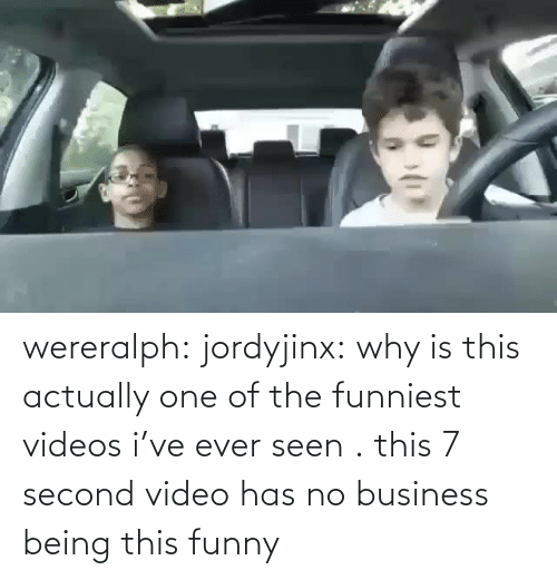 Being: wereralph: jordyjinx: why is this actually one of the funniest videos i've ever seen . this 7 second video has no business being this funny