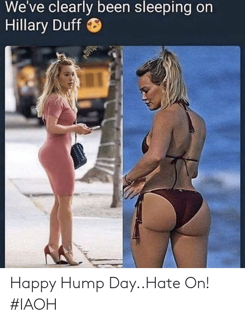 Funny, Hump Day, and Duff: We've clearly been sleeping on  Hillary Duff Happy Hump Day..Hate On! #IAOH