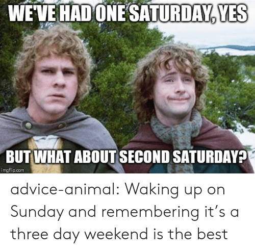 Advice Animal: WEVE HAD ONESATURDAY, YES  BUT WHAT ABOUT SECOND SATURDAY?  imgflip.com advice-animal:  Waking up on Sunday and remembering it's a three day weekend is the best