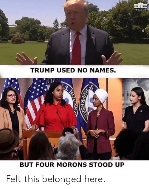 House, Trump, and Names: WH.GOV  TRUMP USED NO NAMES.  BUT FOUR MORONS STOOD UP  REPRESER  ARE  S.HO  HOUSE Felt this belonged here.