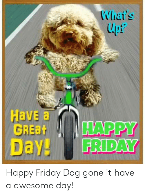 happy friday: Whai's  lpt  upP  Have a  GREBHAPPY  Day! FRIDAY Happy Friday Dog gone it have a awesome day!