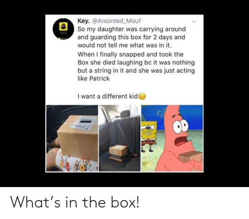 The: What's in the box!
