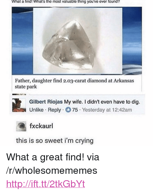 "carat: What a find! What's the most valuable thing you ve ever found?  Father, daughter find 2.03-carat diamond at Arkansas  state park  Gilbert Riojas My wife. I didn't even have to dig.  Unlike Reply 75. Yesterday at 12:42am  fxckaurl  this is so sweet i'm crying <p>What a great find! via /r/wholesomememes <a href=""http://ift.tt/2tkGbYt"">http://ift.tt/2tkGbYt</a></p>"