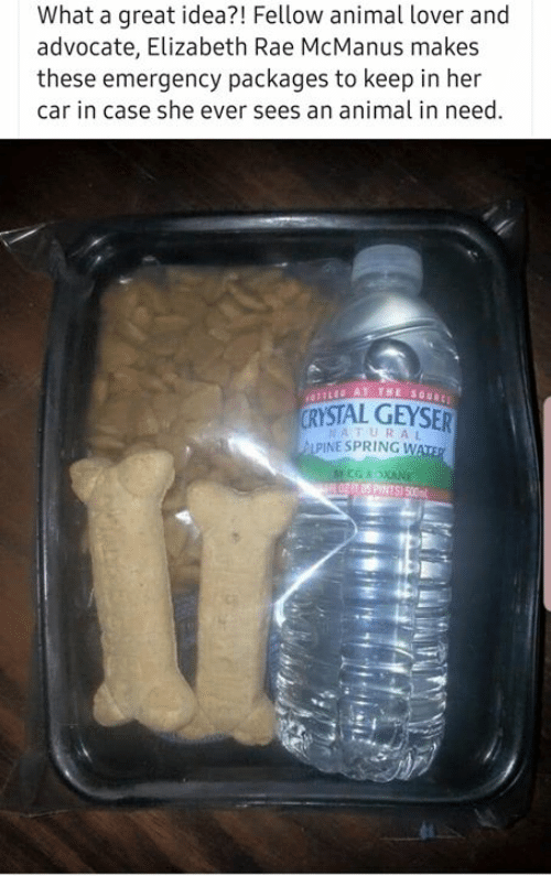 Aww Memes: What a great idea?! Fellow animal lover and  advocate, Elizabeth Rae McManus makes  these emergency packages to keep in her  car in case she ever sees an animal in need  YSTAL GEYSER  NATURAL  PINE SPRING W