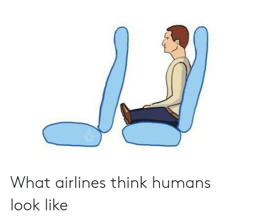 Airlines, Think, and What: What airlines think humans look like