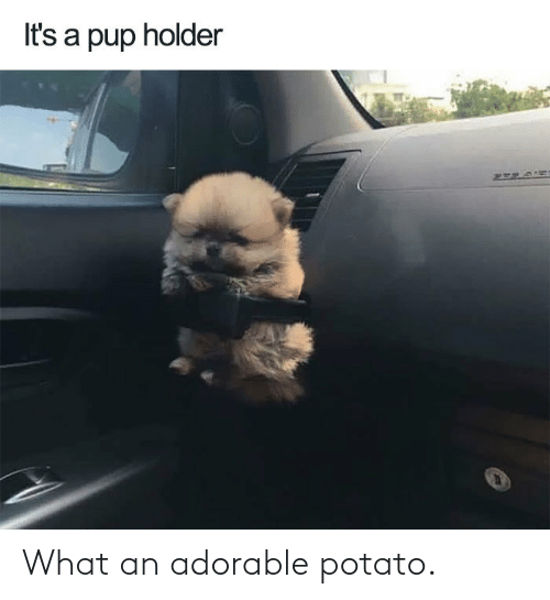 Adorable: What an adorable potato.