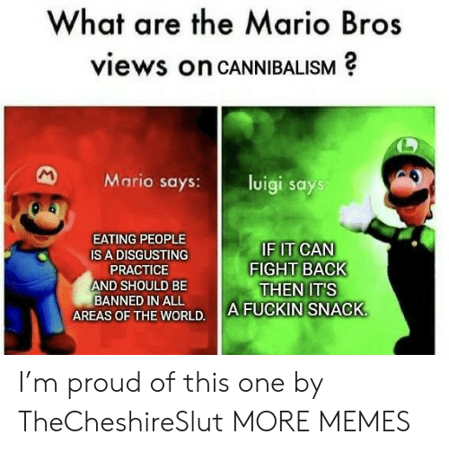 the mario: What are the Mario Bros  views on CANNIBALISM  M  Mario says:  luigi says  EATING PEOPLE  IF IT CAN  FIGHT BACK  THEN IT'S  A FUCKIN SNACK  IS A DISGUSTING  PRACTICE  AND SHOULD BE  BANNED IN ALL  AREAS OF THE WORLD. I'm proud of this one by TheCheshireSlut MORE MEMES