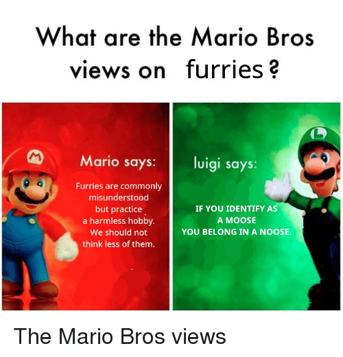 the mario: What are the Mario Bros  views on furries?  Mario says: luigi says:  Furries are commonly  misunderstood  but practice  a harmless hobby.  We should not  think less of them.  IF YOU IDENTIFY AS  A MOOSE  YOU BELONG IN A NOOSE. The Mario Bros views