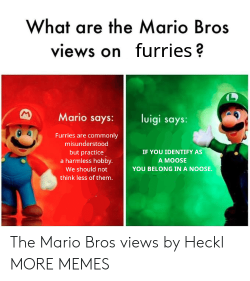 the mario: What are the Mario Bros  views on furries?  Mario says: luigi says:  Furries are commonly  misunderstood  but practice  a harmless hobby.  We should not  think less of them.  IF YOU IDENTIFY AS  A MOOSE  YOU BELONG IN A NOOSE. The Mario Bros views by Heckl MORE MEMES
