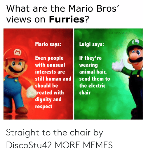 dignity: What are the Mario Bros'  views on Furries?  u/DiscoStu42  Mario says:  Luigi says:  M  Even people  If they're  wearing  animal hair,  with unusual  interests are  still human and  send them to  should be  the electric  treated with  dignity and  respect  chair Straight to the chair by DiscoStu42 MORE MEMES