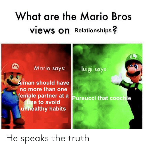 Reddit, Relationships, and Mario: What are the Mario Bros  views on Relationships?  Mario says:  luigi says  Aman should have  no more than one  female partner at a  tme to avoid  unnealthy habits  Pursucci that coochie He speaks the truth