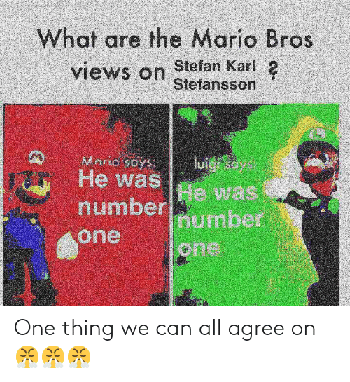 the mario: What are the Mario Bros  views on stefansson  Stefan Karl 2  He was  number number  one  e was  one One thing we can all agree on 😤😤😤