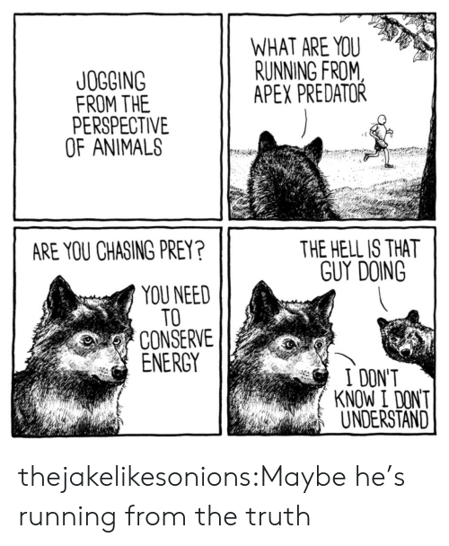 Animals, Energy, and Target: WHAT ARE YOU  RUNNING FROM  APEX PREDATOR  JOGGING  FROM THE  PERSPECTIVE  OF ANIMALS  THE HELL IS THAT  GUY DOING  ARE YOU CHASING PREY?  YOU NEED  TO  CONSERVE  ENERGY  I DONT  KNOW I DON'T  UNDERSTAND thejakelikesonions:Maybe he's running from the truth