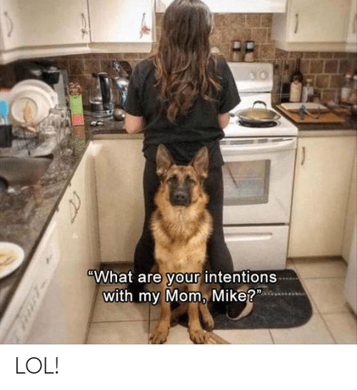 Lol, Memes, and Mom: What are your intentions  with my Mom, Mike? LOL!