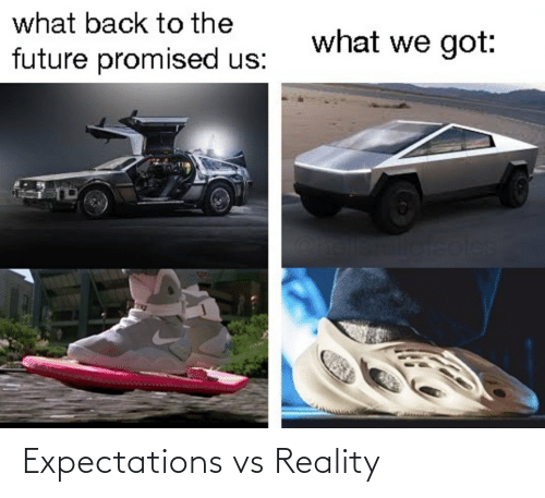 Expectations: what back to the  what we got:  future promised us:  soles Expectations vs Reality