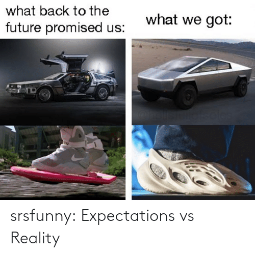 Expectations: what back to the  what we got:  future promised us:  soles srsfunny:  Expectations vs Reality