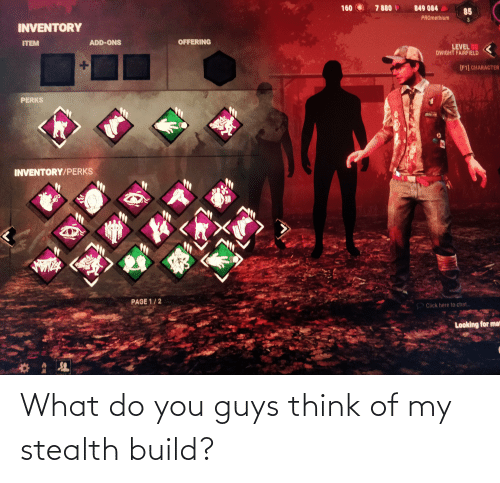 stealth: What do you guys think of my stealth build?