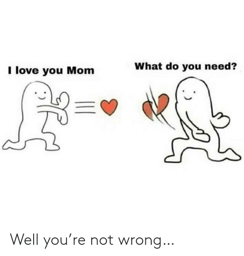 I Love You: What do you need?  I love you Mom Well you're not wrong…