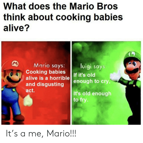 horrible: What does the Mario Bros  think about cooking babies  alive?  M  Mario says:  Cooking babies  alive is a horrible  and disgusting  luigi says:  If it's old  enough to cry,  act.  It's old enough  to fry. It's a me, Mario!!!