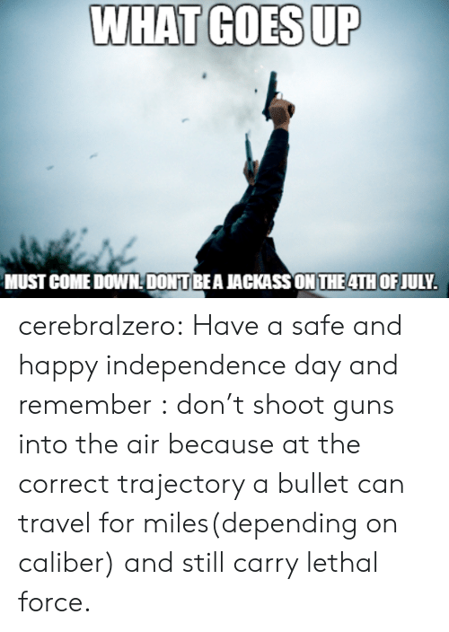 independence: WHAT GOES UP  MUST COME DOWNDONTBEA JACKASSON THE4TH OF JULY. cerebralzero:  Have a safe and happy independence day and remember : don't shoot guns into the air because at the correct trajectory a bullet can travel for miles(depending on caliber) and still carry lethal force.