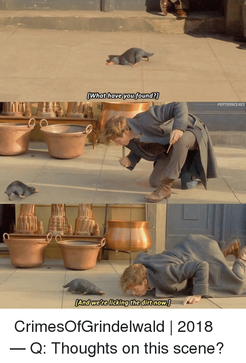 Memes, 🤖, and Dirt: What have youfoundaT  What have voufound  POTTERSCENES  [And were licking the  the dirt now ➙ CrimesOfGrindelwald | 2018 — Q: Thoughts on this scene?