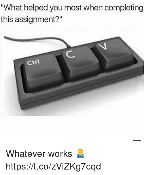"You, Works, and What: What helped you most when completing  this assignment?""  Ctri Whatever works 🤷‍♂️ https://t.co/zViZKg7cqd"