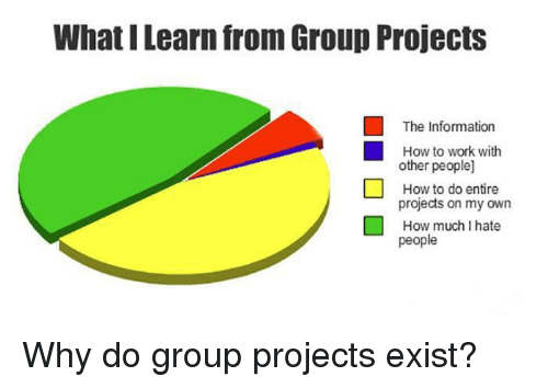 i hate people: What I Learn from Group Projects  The Information  How to work with  other people]  How to do entire  projects on my own  How much I hate  people Why do group projects exist?