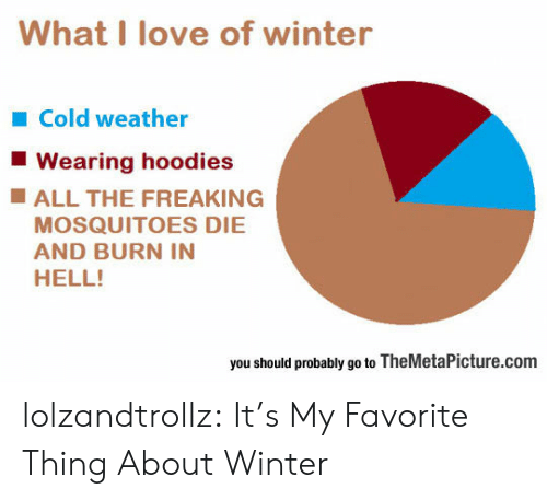 Love, Tumblr, and Winter: What I love of winter  Cold weather  Wearing hoodies  ALL THE FREAKING  MOSQUITOES DIE  AND BURN IN  HELL!  you should probably go to TheMetaPicture.com lolzandtrollz:  It's My Favorite Thing About Winter
