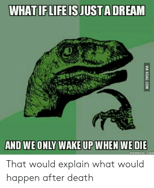 We Only: WHAT IF LIFE IS JUSTA DREAM  AND WE ONLY WAKE UP WHEN WE DIE  MEMEFUL.COM That would explain what would happen after death