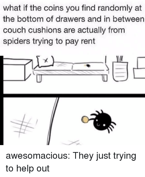 Tumblr, Blog, and Couch: what if the coins you find randomly at  the bottom of drawers and in between  couch cushions are actually from  spiders trying to pay rent awesomacious:  They just trying to help out